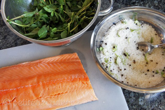 Salmon with spearmint